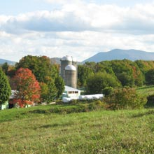 Gilmore_farmland